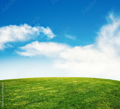 summer grass lawn with sky