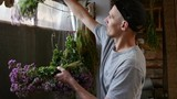 Bouquets of herbs are dried indoors - 173829024