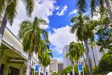 ハワイ アロハタワーから見たビジネス街の風景 - 173858688