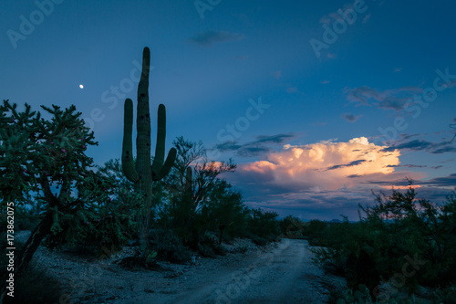 Fotobehang Arizona Evening descends on the end of an active monsoon day in the Sonoran Desert.