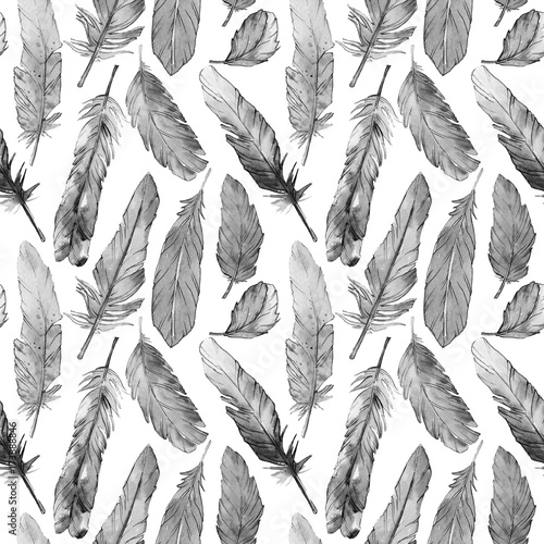 Watercolor bird feather pattern from wing. Aquarelle feather for background, texture, wrapper pattern, frame or border. - 173888846