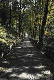 Radical Diminishing Perspective Of Beautiful Cobblestone Alley Surrounded By Trees During Autumn - 173940012