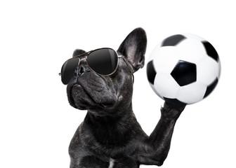 soccer player dog © Javier brosch