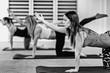 Yoga Class - Sunbird Pose