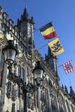 Provinciaal Hof - Bruges - Belgium. poster