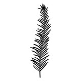 stem with thin leaves on black silhouette - 174035898