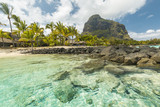 White sandy beach, coconut trees and clear blue water in Le Morne, Mauritius - 174039472
