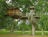 Cabane dans les arbres - 174069801