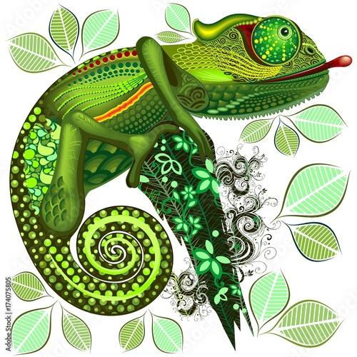 Deurstickers Draw Chameleon Green Fantasy