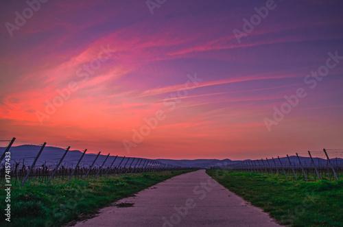 Aluminium Koraal Sunset road landscape