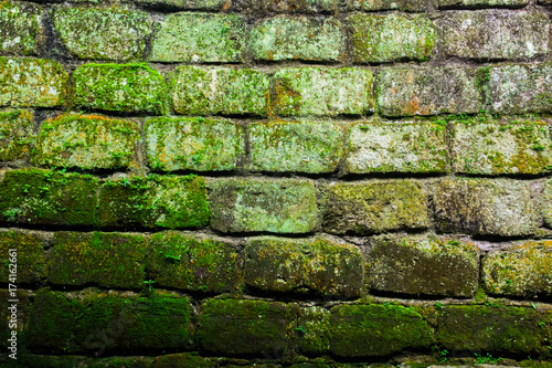 Papiers peints Brick wall Brick wall with moss and lichen