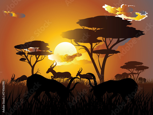 In de dag Chocoladebruin Sunset Landscape with Antelopes