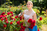 young female gardener caring roses . - 174209258