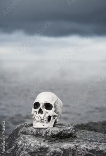 Human skull on the stone. Halloween background