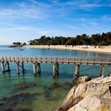 Île de Noirmutier > Vendée > France - 174304425