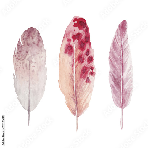 Watercolor feathers collection - 174321655
