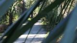 People Walking On Hiking Trail - 174356020