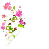 Beautiful wildflowers, bouquet, isolated  on a white