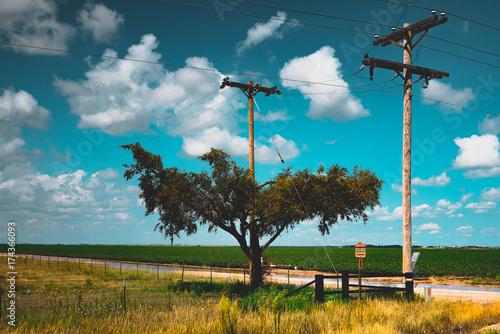 Foto op Canvas Groen blauw Amarillo