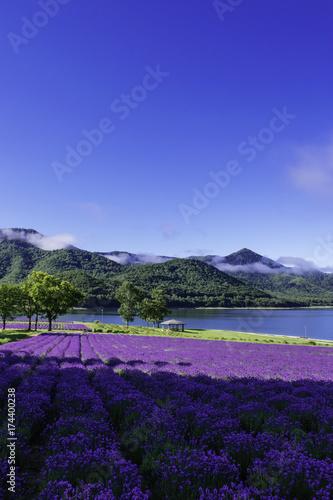 Papiers peints Bleu fonce 南富良野 金山湖