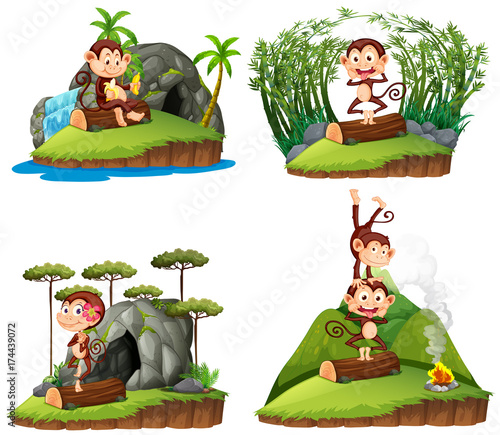 Fotobehang Kids Four scenes with monkey in forest