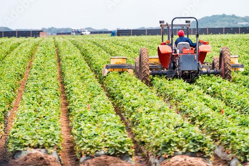 Fotobehang Trekker Tractor in action, agricultural environment