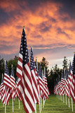 A patriotic field of flags backed by a blazing sunset. - 174563061