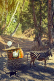 Zebra pulling cart with pumpkin house