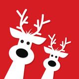 Two white Christmas Reindeer - 174600656