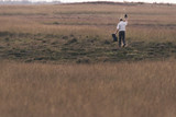 Park ranger scattering food in field with yellow grass. - 174607460