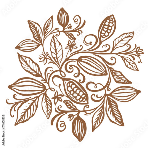 Cocoa beans illustration. Chocolate cocoa beans. Vector illustration