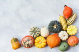 Top view of varieties of pumpkins and gourds on the off white grey stone background, copy space for text, selective focus - 174609440