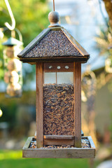 Bird house hanging