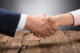 Two Businesspeople Shaking Hands - 174671869
