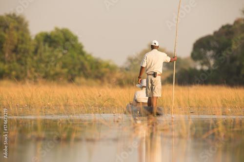 Moroko at Okavango Delta
