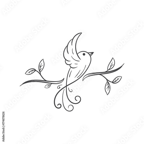 beautiful floral bird vector illustration