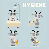Set of funny goat is hygiene: showering, washing hands, brushing her teeth. Collection of isolated goat in cartoon style for rules of child hygiene. - 174684808