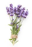 Lavender flowers. - 174685247