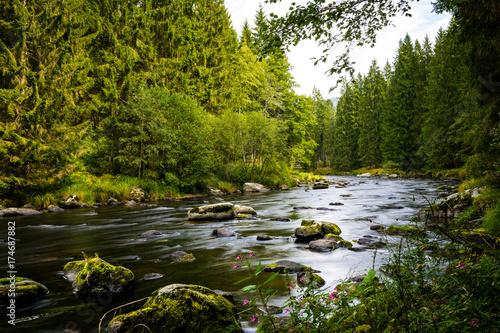 Papiers peints Rivière de la forêt Bayerisch Kanada mit Fluss und Steinen im Bayerischen Wald