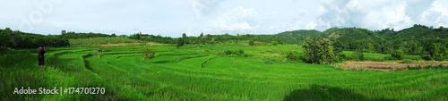 Papiers peints Les champs de riz beautiful Amazing Rice terraces.