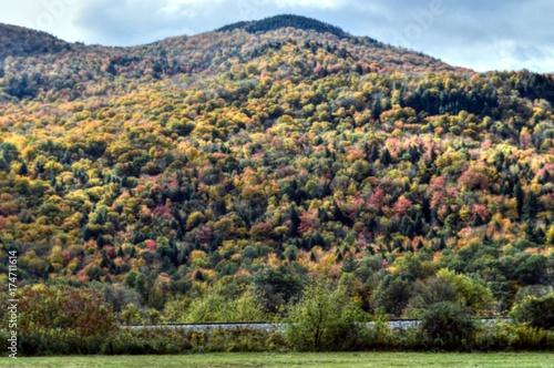 Poster Pistache New England Foliage