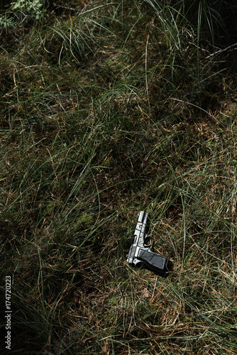 Pistol in sunlight in grass. High angle view. Poster