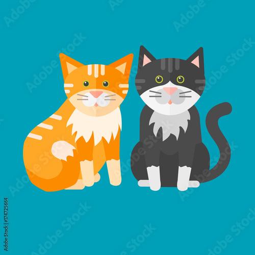 Portrait cat animal pet cute kitten purebred feline kitty domestic fur adorable mammal character vector illustration.