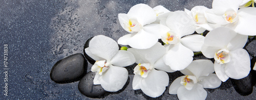 Still life with spa stones and white orchid. © Swetlana Wall