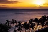 Hawaiian Sunset - 174739610