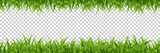Vector realistic isolated green grass borders for decoration and covering on the transparent background.
