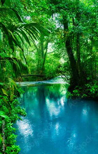 Fotobehang Rio de Janeiro Blue Celeste River in Costa Rica