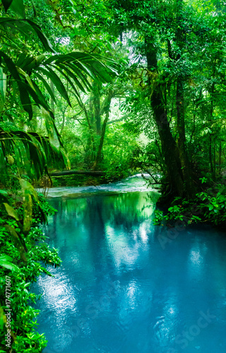 Deurstickers Rio de Janeiro Blue Celeste River in Costa Rica