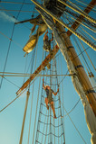 Working The Sails on Tall Ship Visiting Olympia Washington, USA, in Puget Sound - 174774652