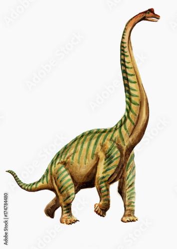 Foto op Plexiglas Draken Рисунок акварелью